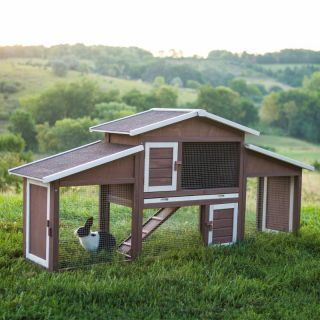 Boomer & George Dual Use Rabbit Hutch Chicken Coop Multicolor   XCD012 1